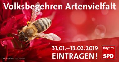 SPD unterstützt Volksbegehren
